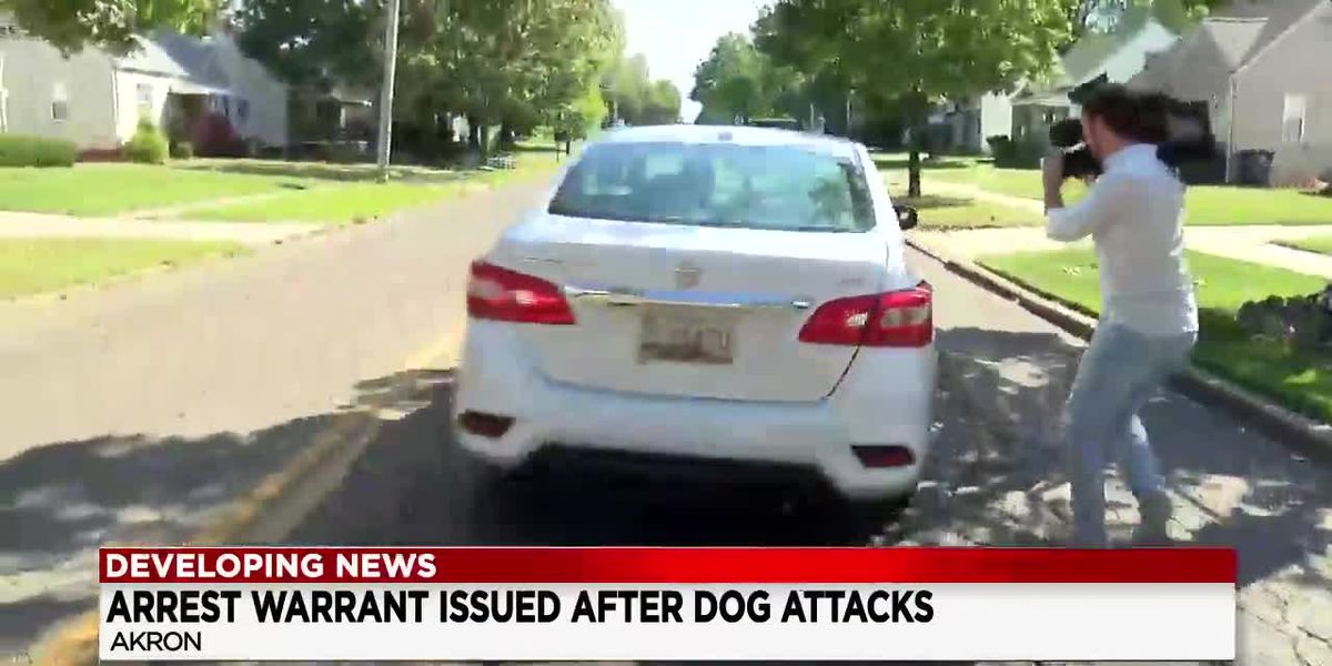 Akron pit bull owner whose dogs mauled 4 people now on the run after fleeing in Lyft car
