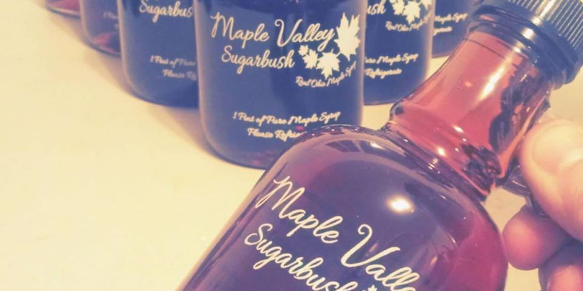 Taste Buds: maple syrup production