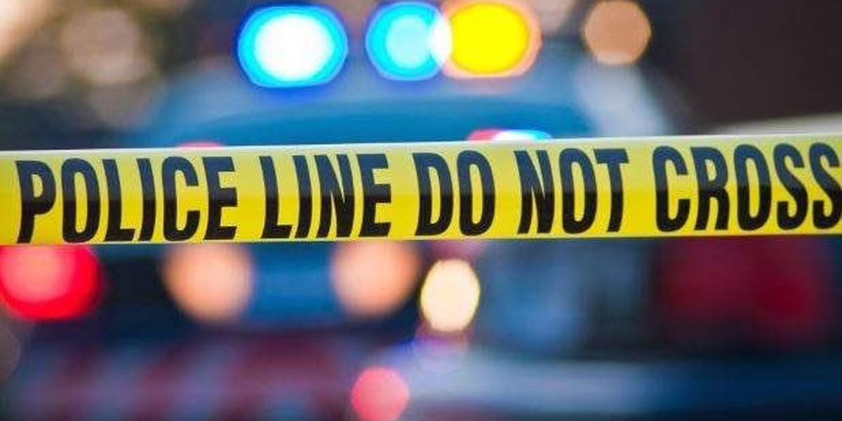 Man shot and killed overnight