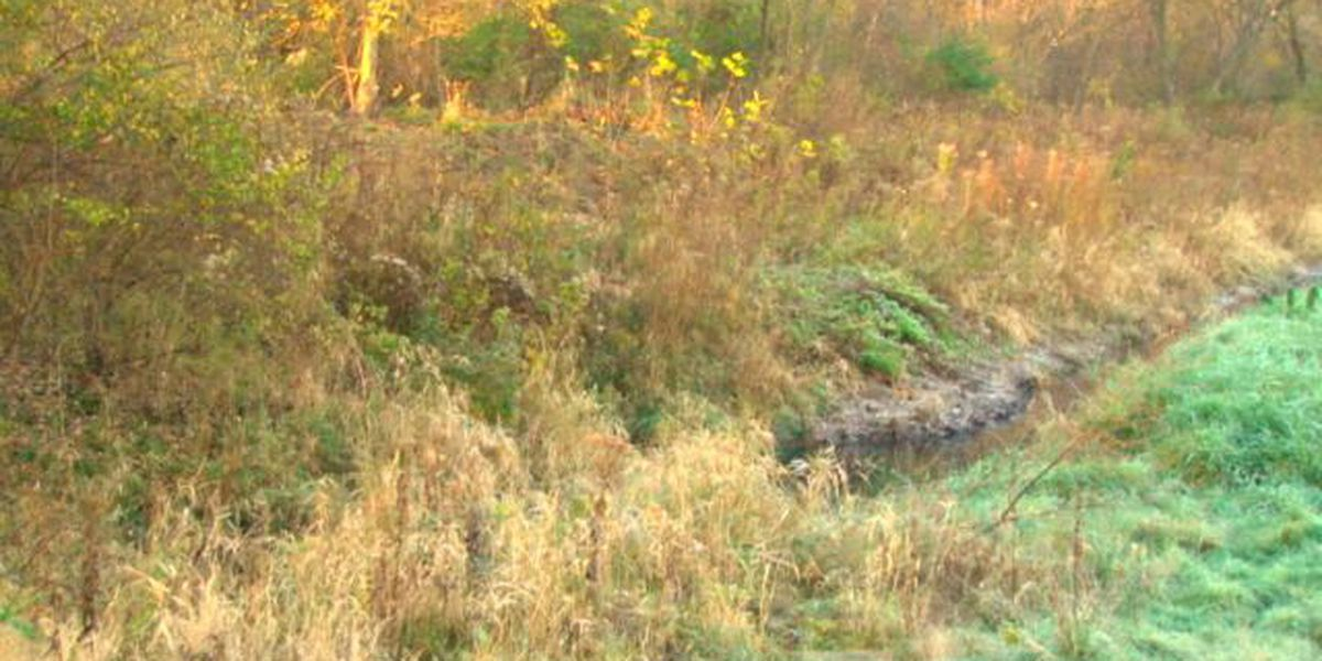 North Ridgeville residents say dirt pile causing heap of problems