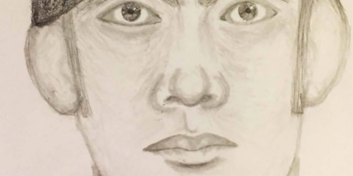 Sketch released after Avon Lake home invasion