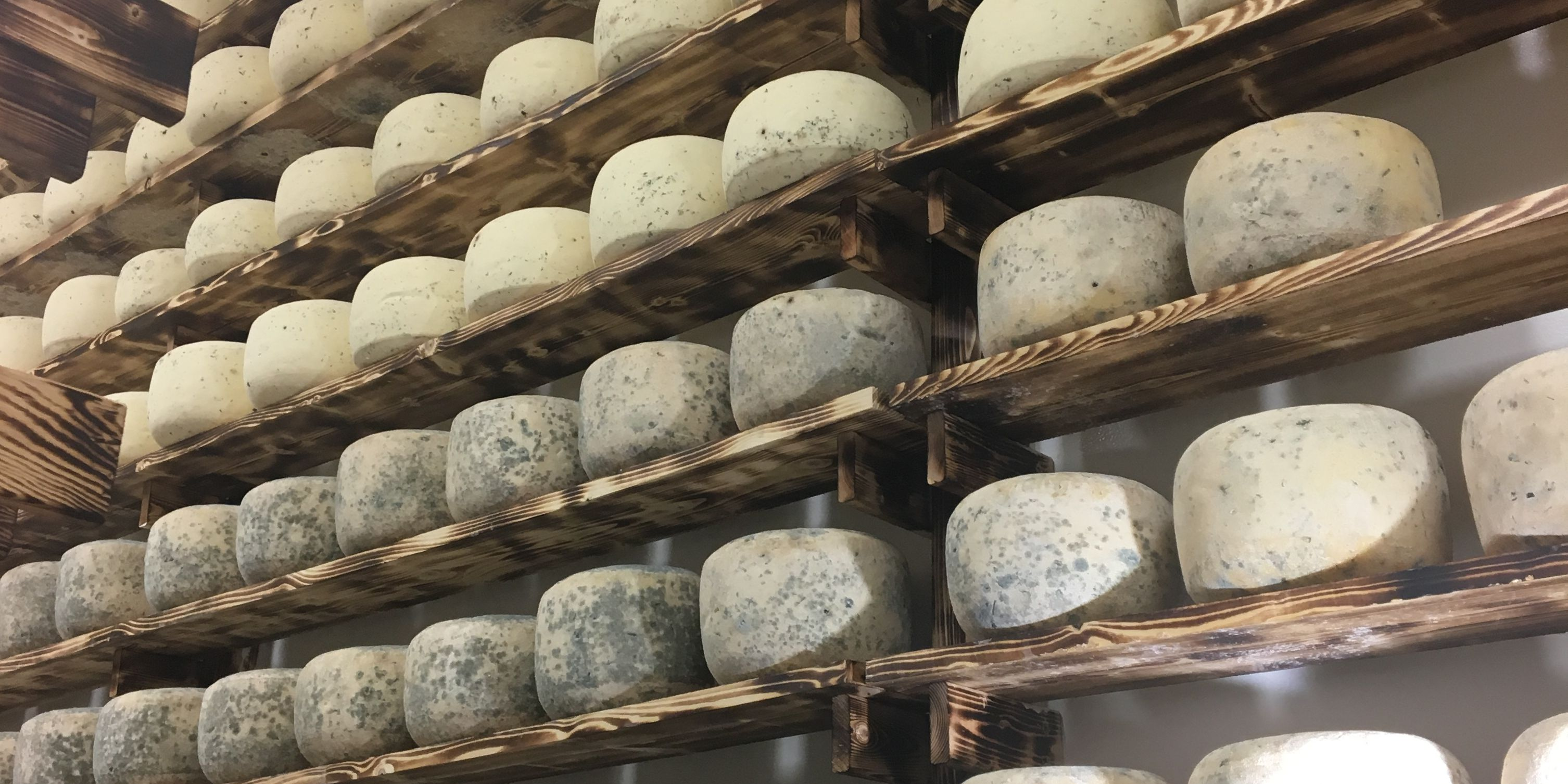 Old Brooklyn shop churning out 2,800 pounds of cheese per month: Cleveland Cooks