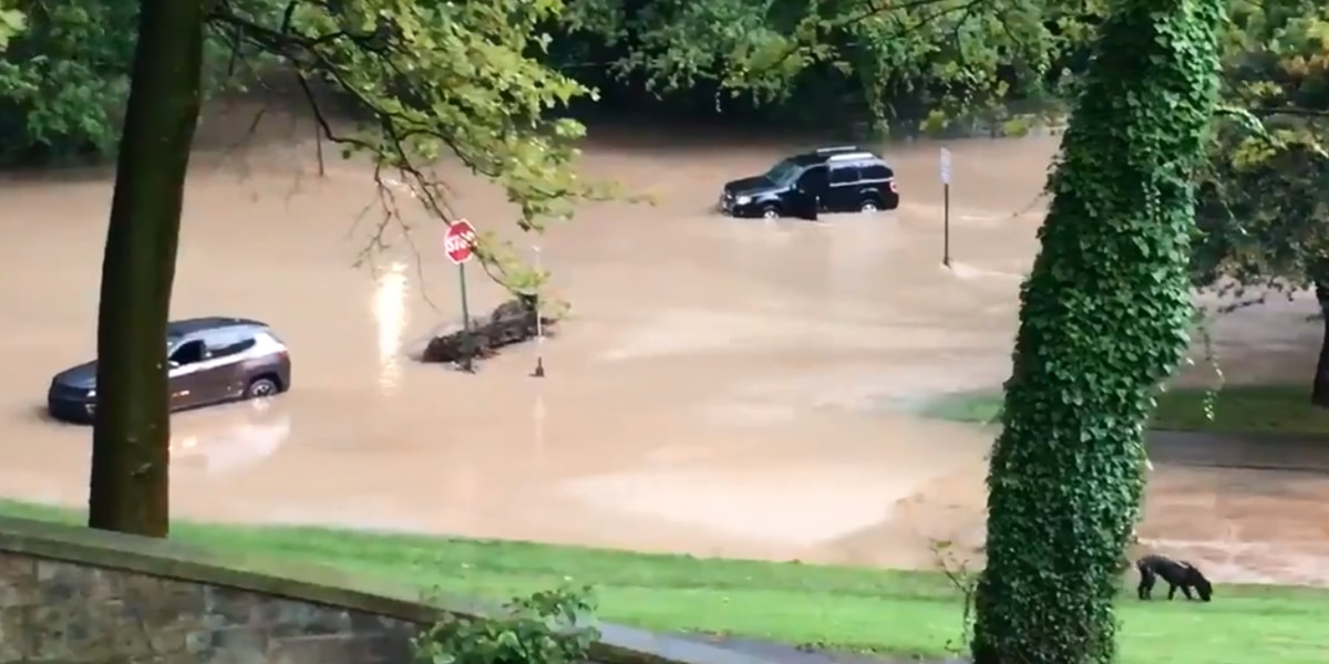 Multiple cars stranded, submerged in significant flooding on Cleveland's East side (video)