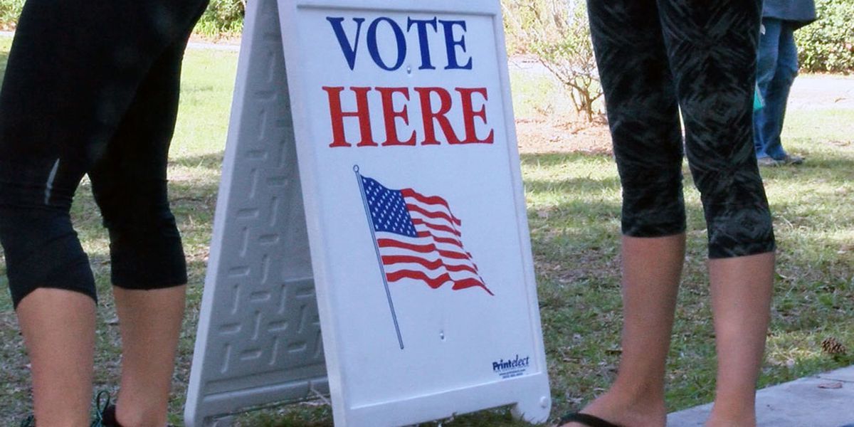 Sunny Side Up: Should election day be considered a holiday?