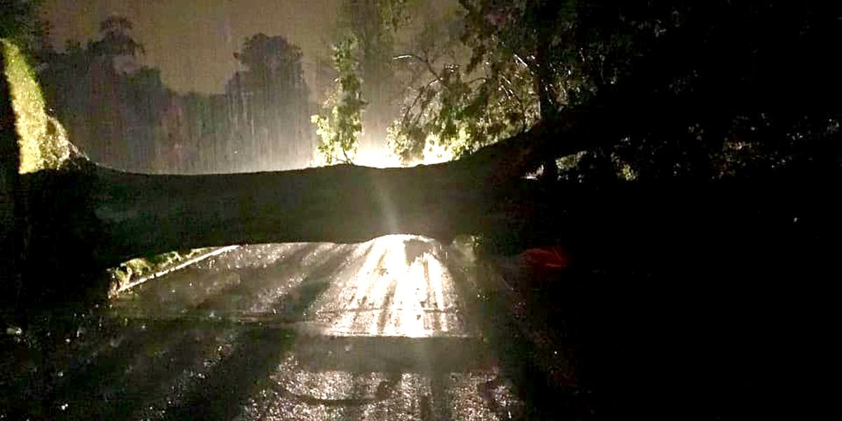 Storms cause widespread damage, 13 poles in Cuyahoga County snapped by the storm