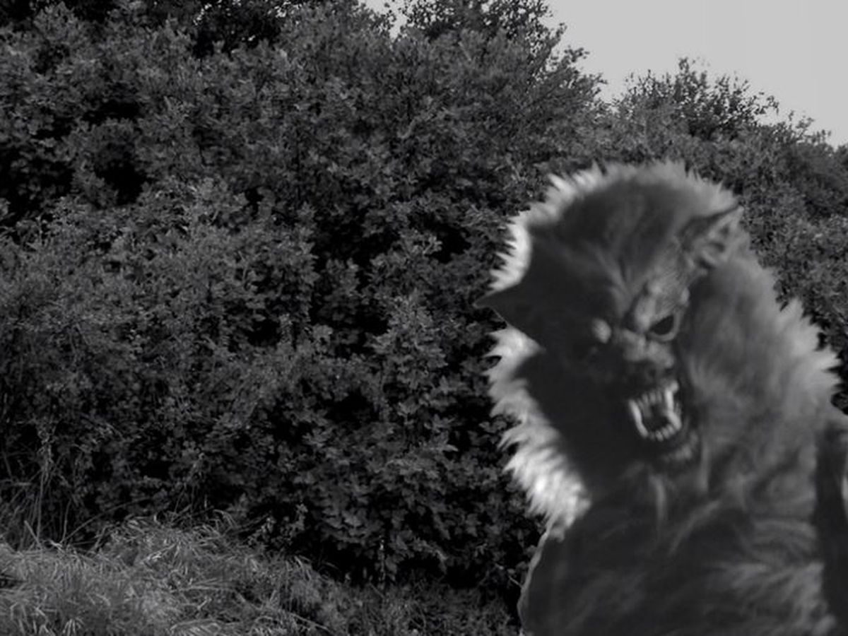 'The Werewolf of Defiance' is an Ohio local legend that still haunts (video)