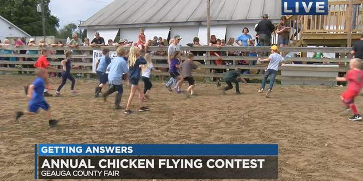Chicken Flying Contest held at the Geauga County Fair