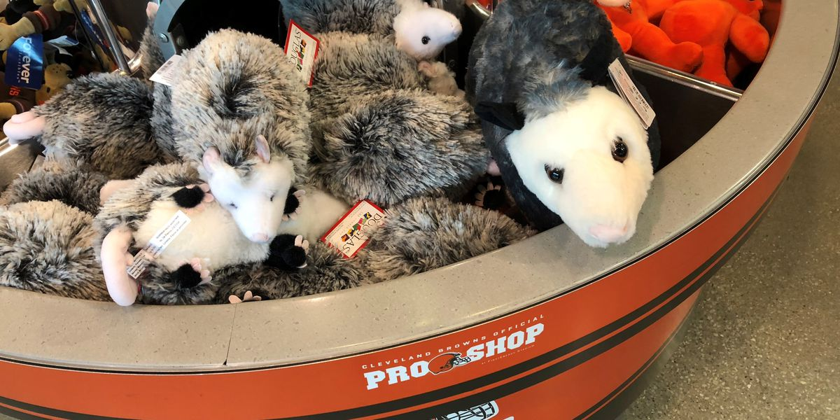 It's real! Limited number of 'Rally Opossums' are being sold by Cleveland Browns