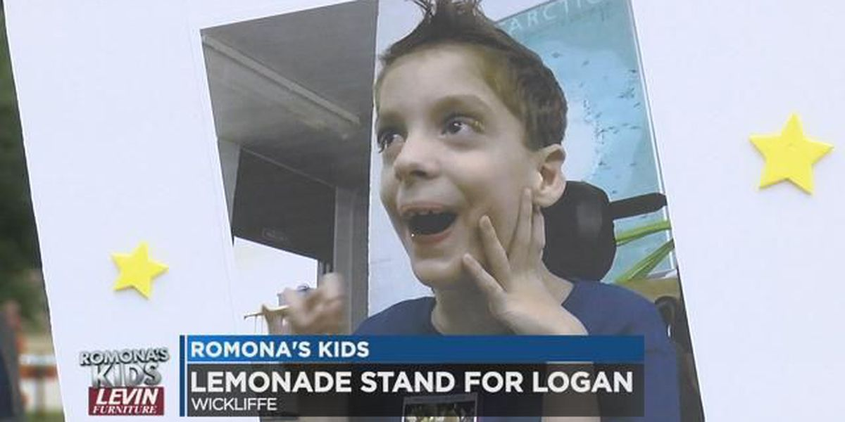 Uplifting 'Lemonade Stand for Logan' raising funds in Wickliffe: Romona's Kids