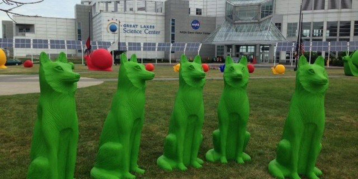 Pop-up animal art around downtown Cleveland