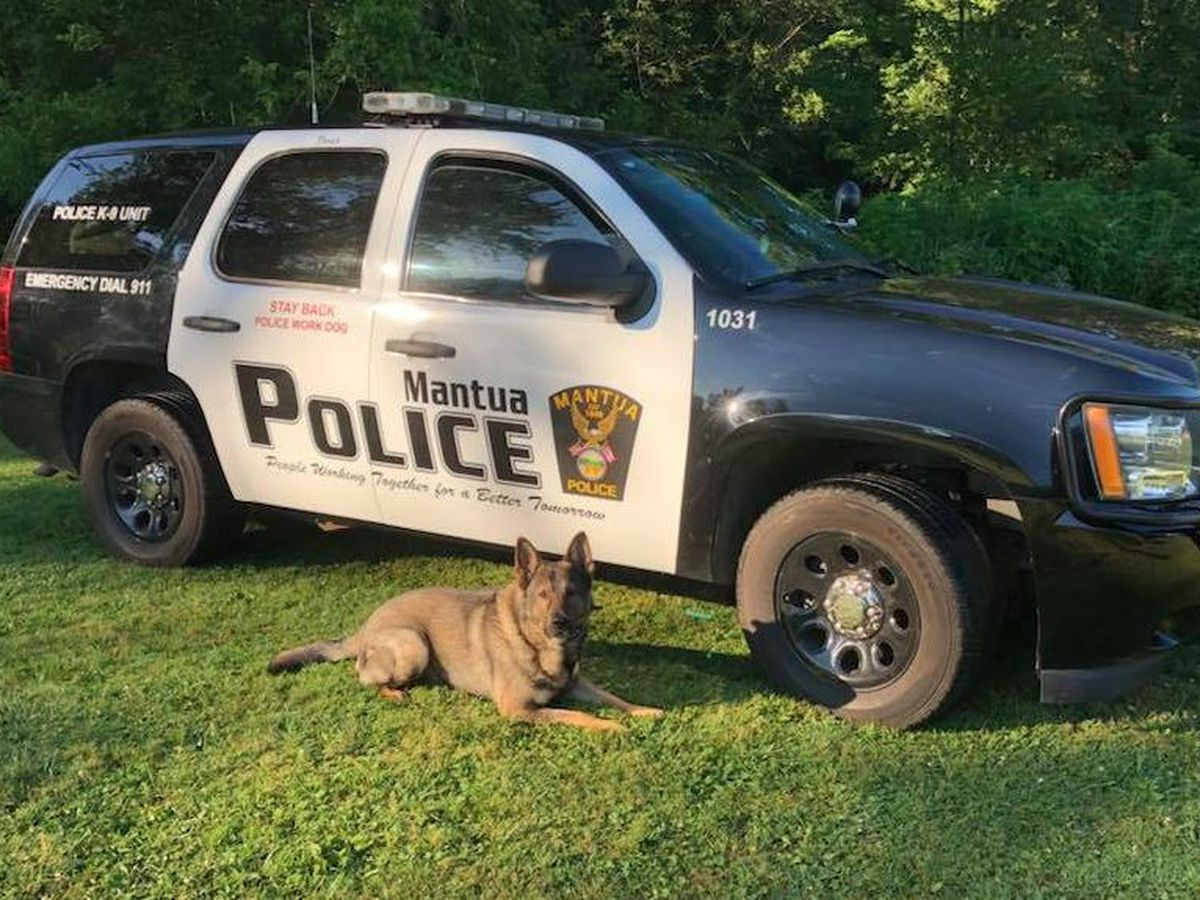 Mantua police mourn loss of beloved K-9 officer