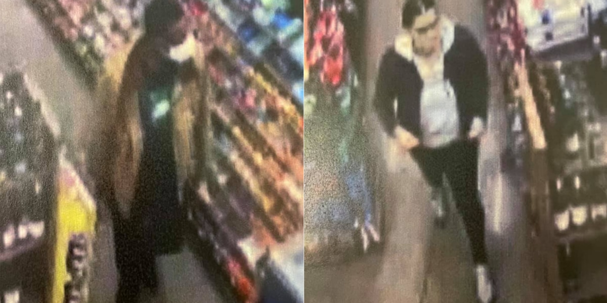 Perkins Township Police search for theft suspects
