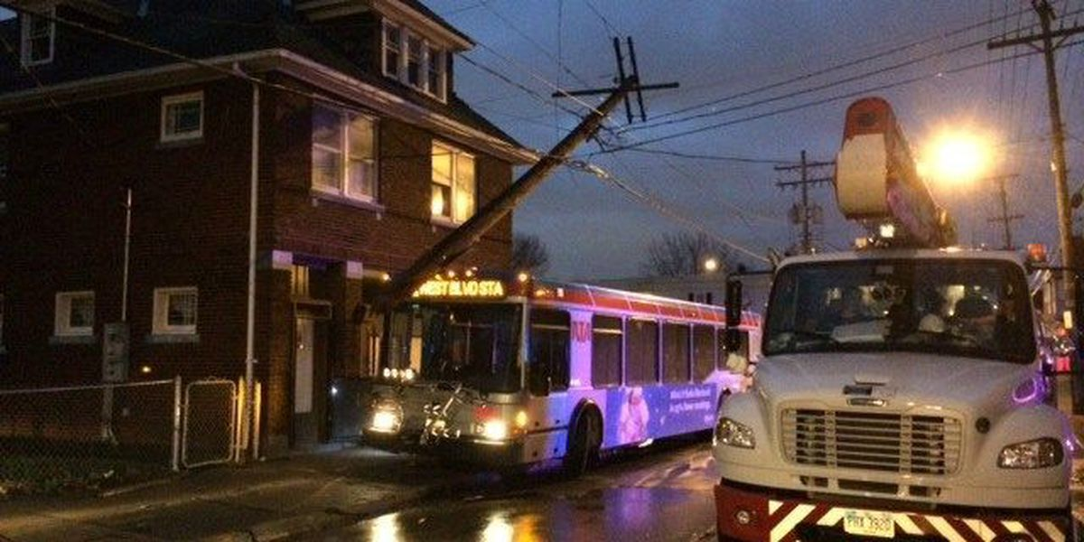 RTA bus jumps curb, takes out power lines
