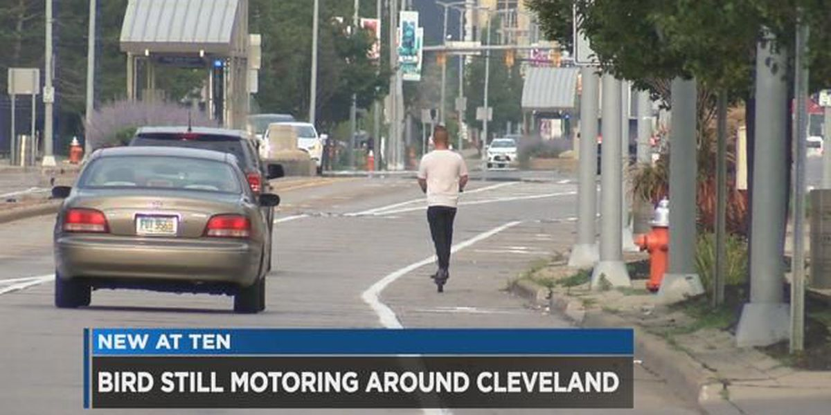Bird scooters take flight in Cleveland