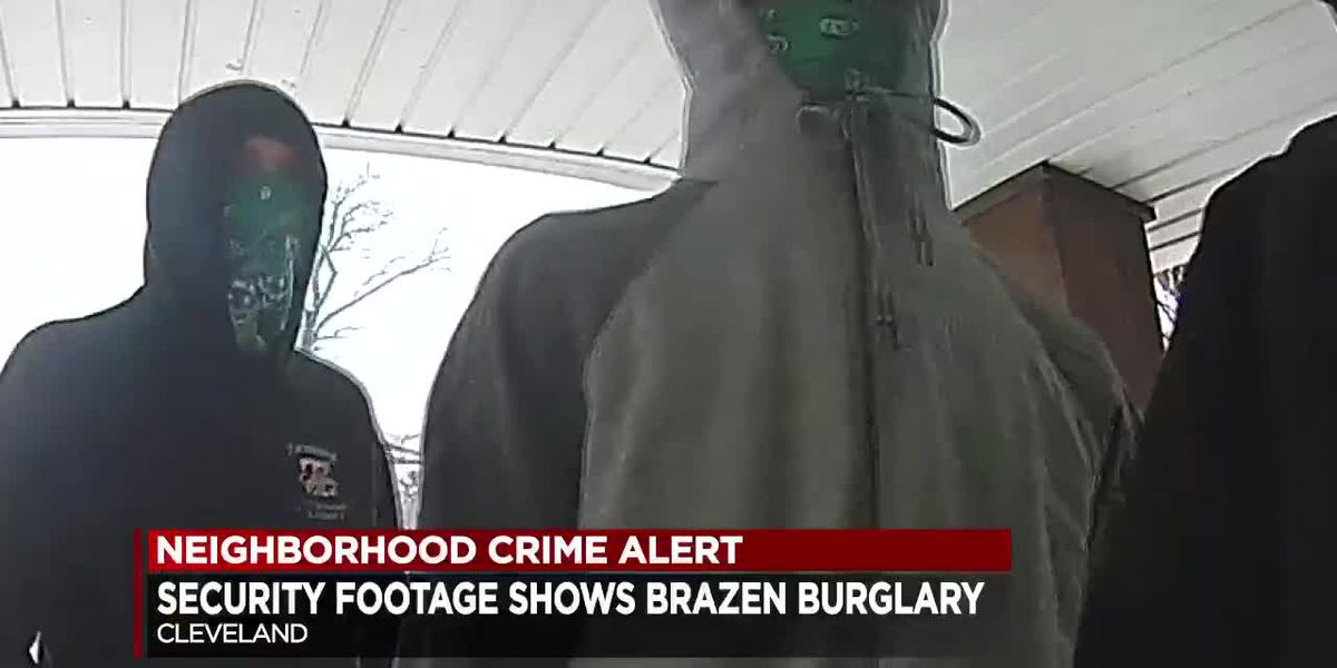 Burglars subdue pit bulls with bacon, hamburgers while robbing Cleveland home