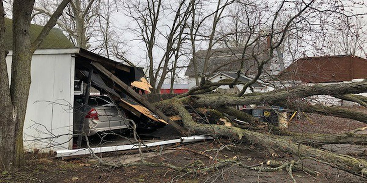 Massive, old rotting tree damages home and carport in Elyria following gusting winds