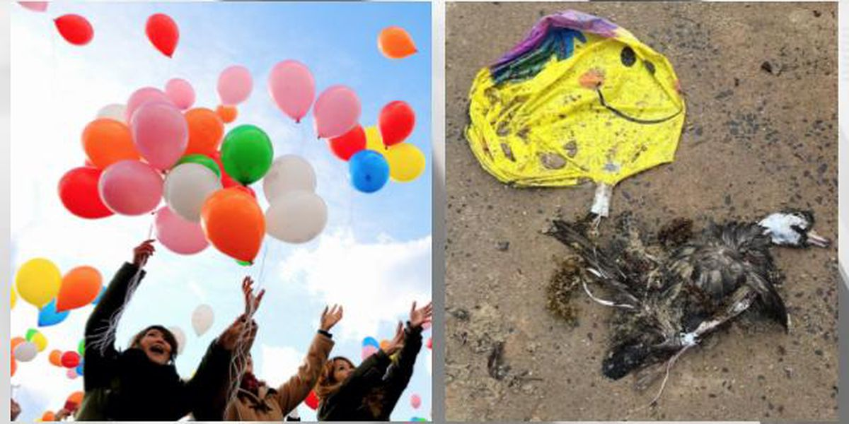 'Balloon pollution' choking the Great Lakes, 18,000 pieces of debris found on shorelines since 2016