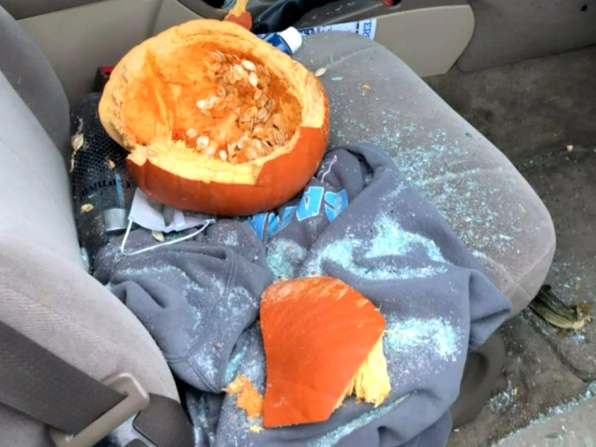 Indiana student survives pumpkin smashing through car