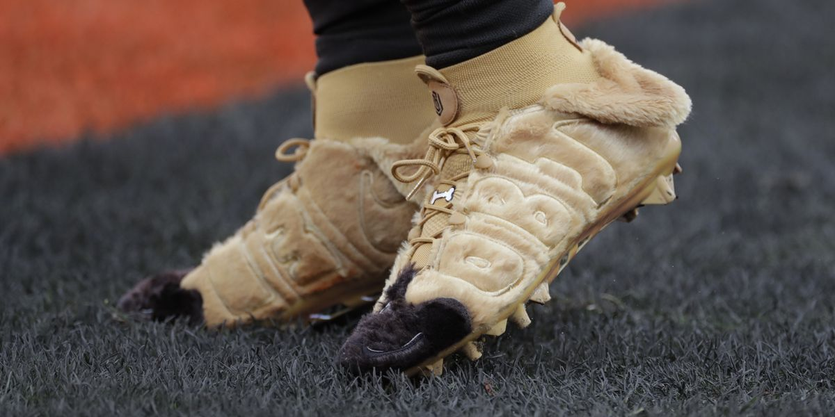 Dawg Pound helps dogs in the pound: OBJ sports cleats supporting Berea Animal Rescue