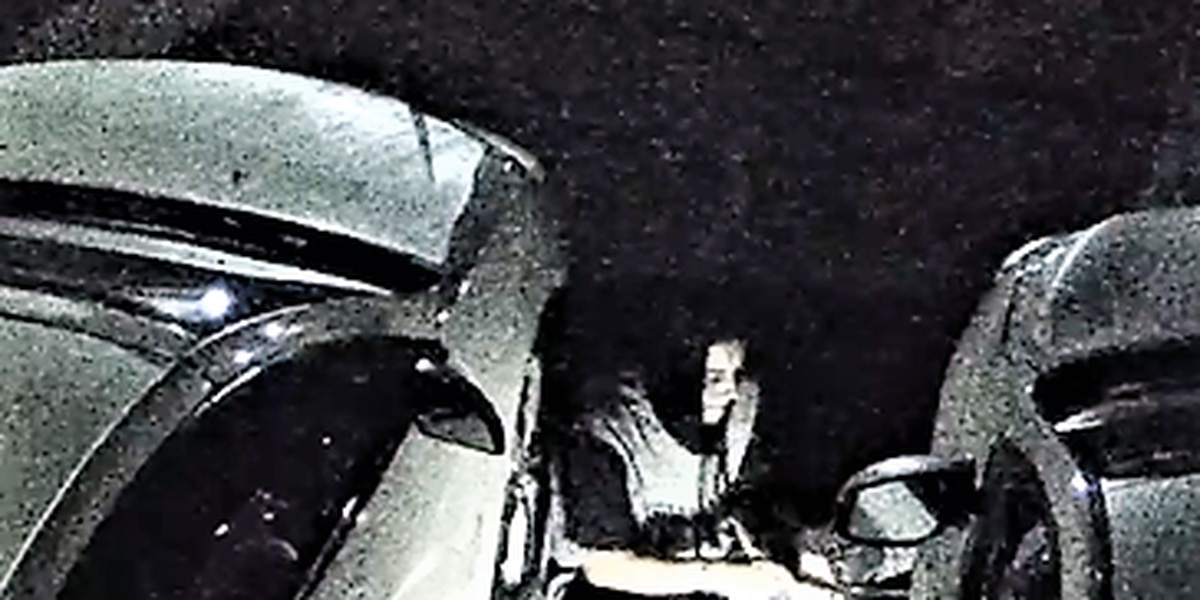 Cleveland Police searching for 2 tire thieves caught on surveillance camera