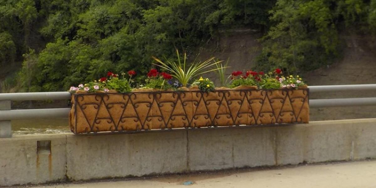 Painesville bridge flowers vandalized, business owner donates