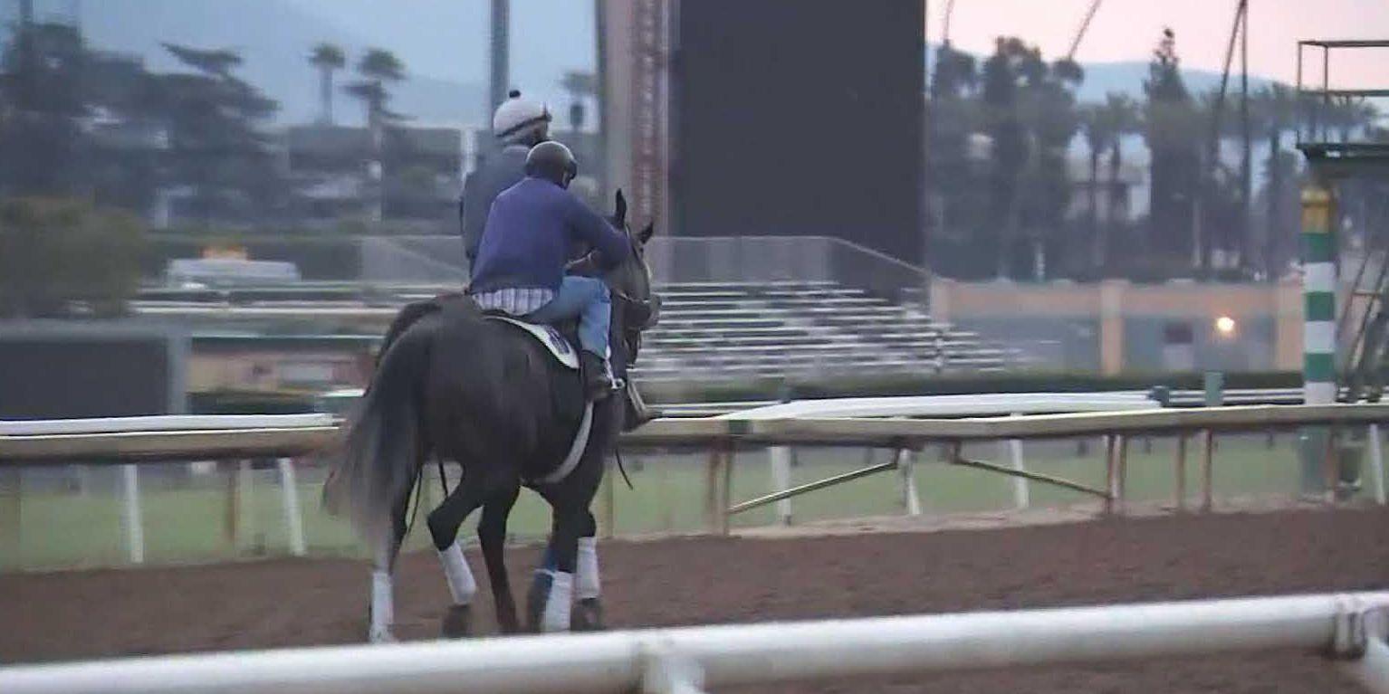 22 horses die in 3 months at California racetrack