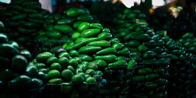 From cars to avocados, closing the Mexican border would cut deep into the economy