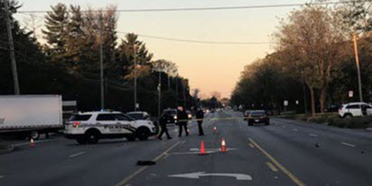Student killed after being hit by van