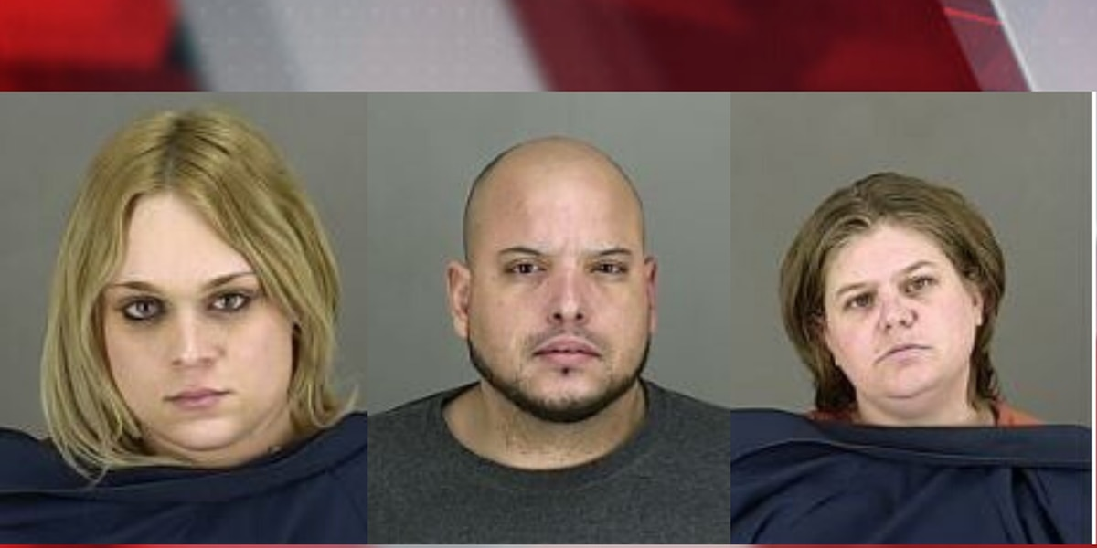 Summit County Sheriffs, several other law enforcement agencies make 8 arrests in human trafficking sting