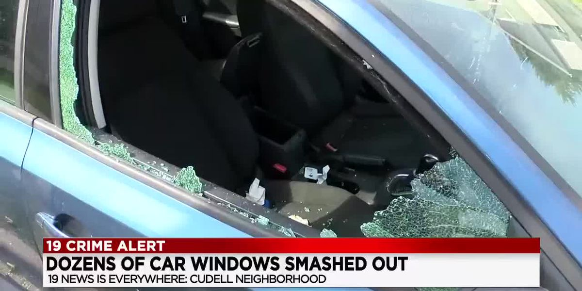 Dozens of cars vandalized, had their windows broken, on Cleveland's west side