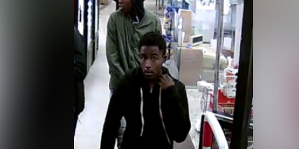 Search continues for 2 suspects accused of robbing 74-year-old woman at gunpoint