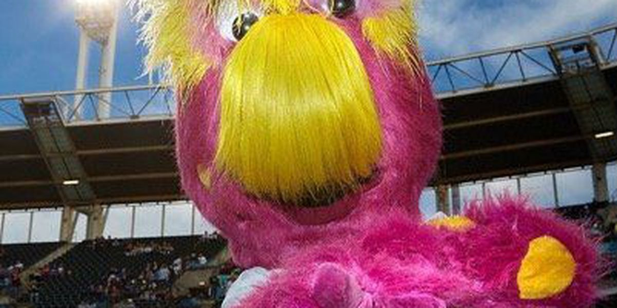 reputable site 92680 a4548 Cleveland Indians welcome new mascot to the team (photo)