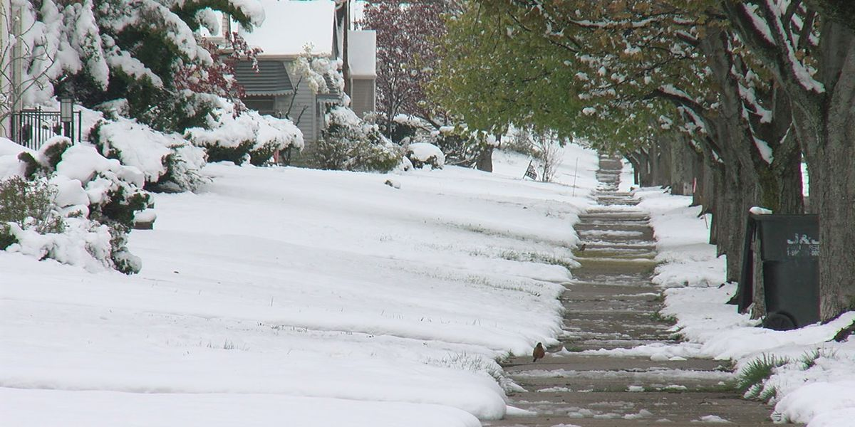 Spring snowstorm snaps trees and saps power on Cleveland's East Side