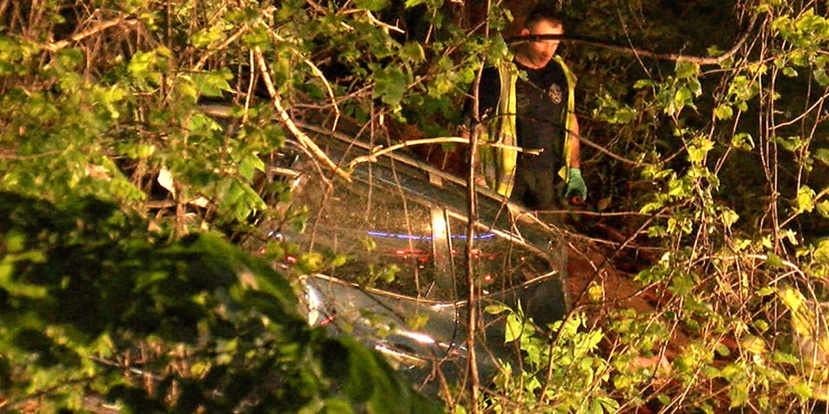 Woman hit by car in Cleveland that goes airborne, lands in tree-lined embankment