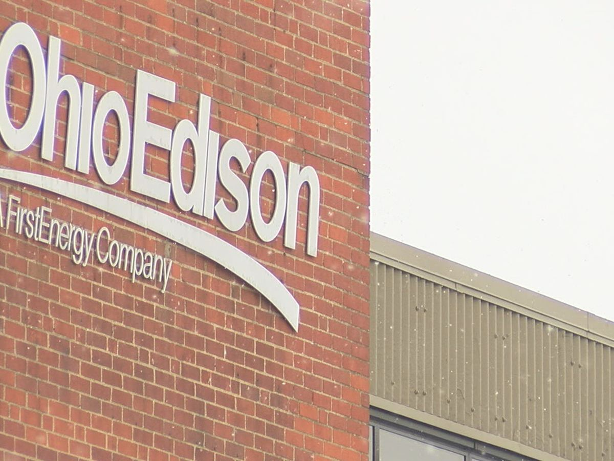 Elyria woman fined $4,000 by Ohio Edison for meter tampering, which she denies