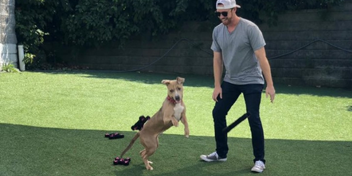 Cleveland Indians' Jordan Luplow donates over 100 toys to Cleveland Animal Protective League dogs