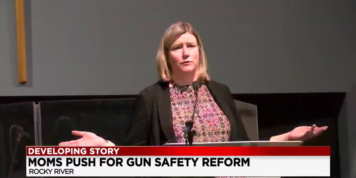 'The Power Of Moms' event giving mothers a voice against gun violence