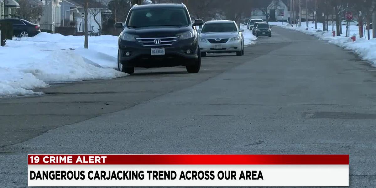 Neighbors react to several carjackings in Cleveland's West Park neighborhood