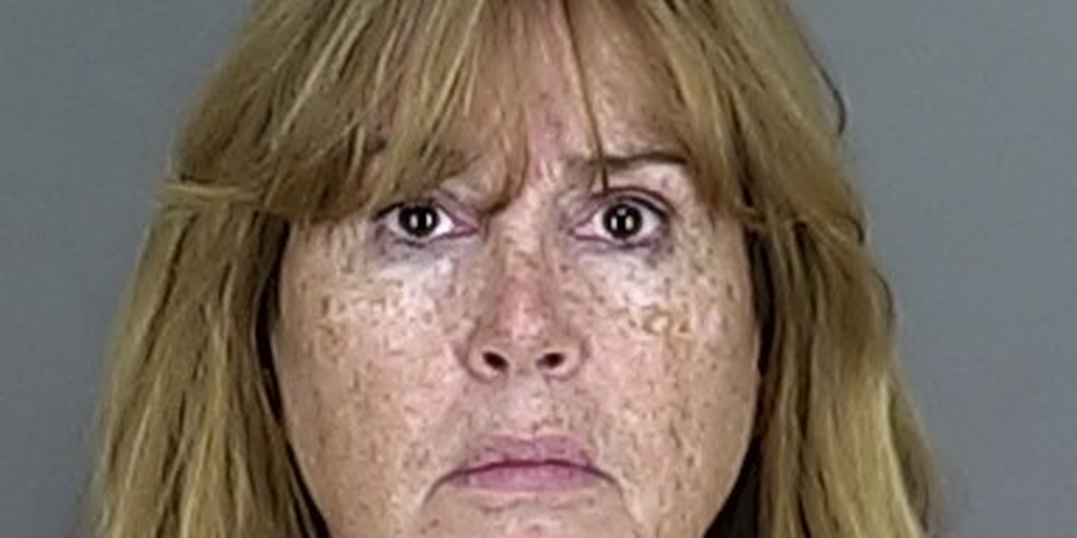 Former Northfield Township fiscal officer charged with felony theft