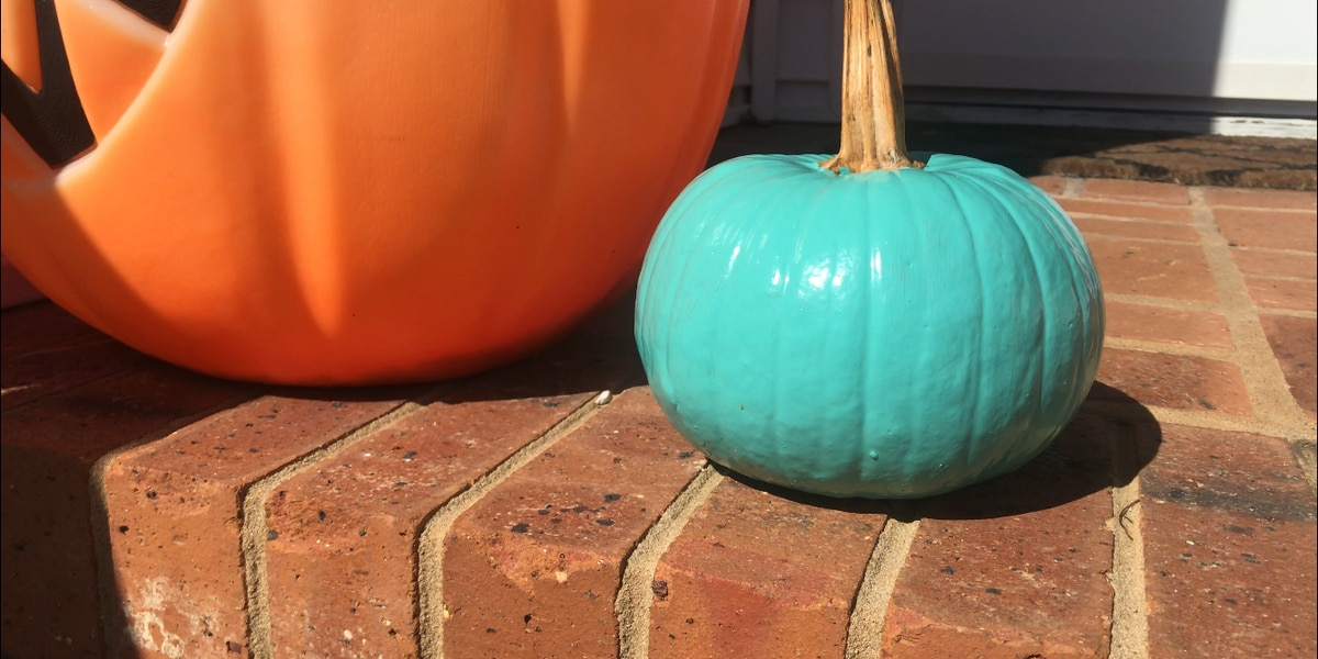 'Teal Pumpkin Map' shows which homes hand out allergen-free Halloween treats