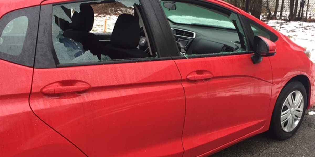 Dozens of cars broken into overnight in several East Side suburbs