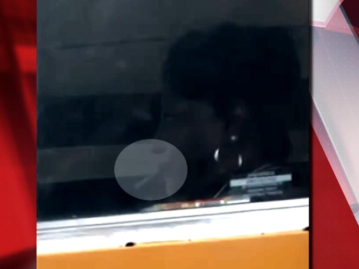 Cleveland school bus driver caught on camera smoking in her bus