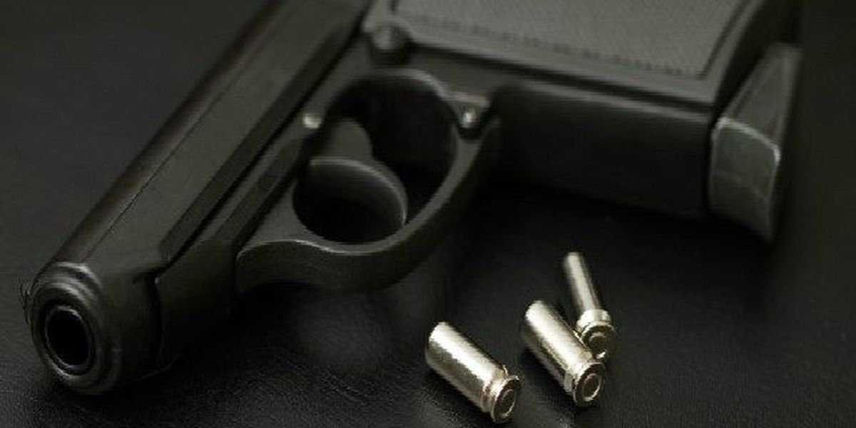 Concealed weapons permits owners can carry their guns in daycares