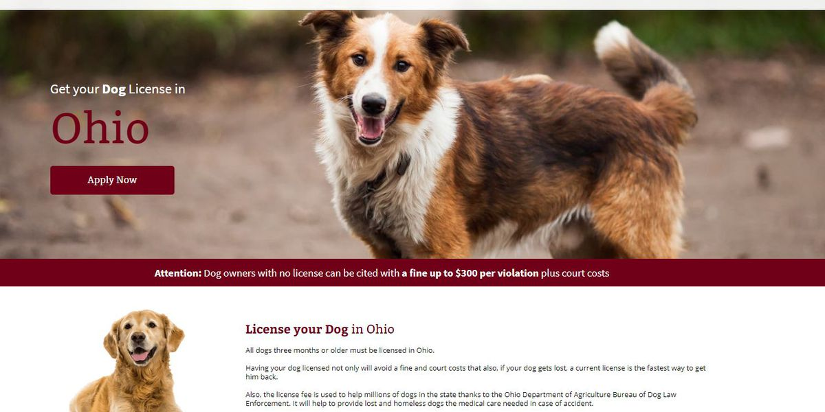 Woof! Cuyahoga County warning of fake website trying to get you to license your dog