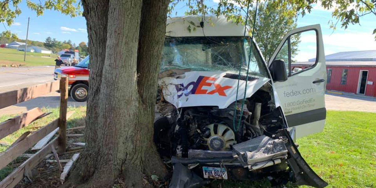 UPDATE: FedEx van strikes Amish cart; horse killed, driver seriously injured (photos)