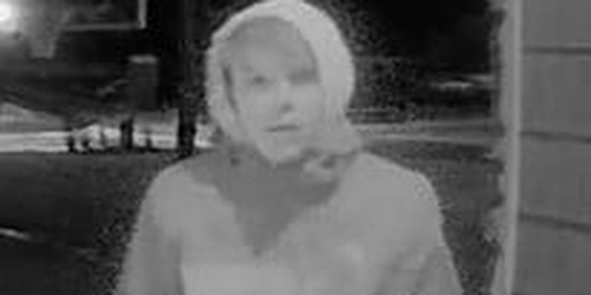 Highland Heights Police search for suspect seen trying to break into car just hours into the New Year