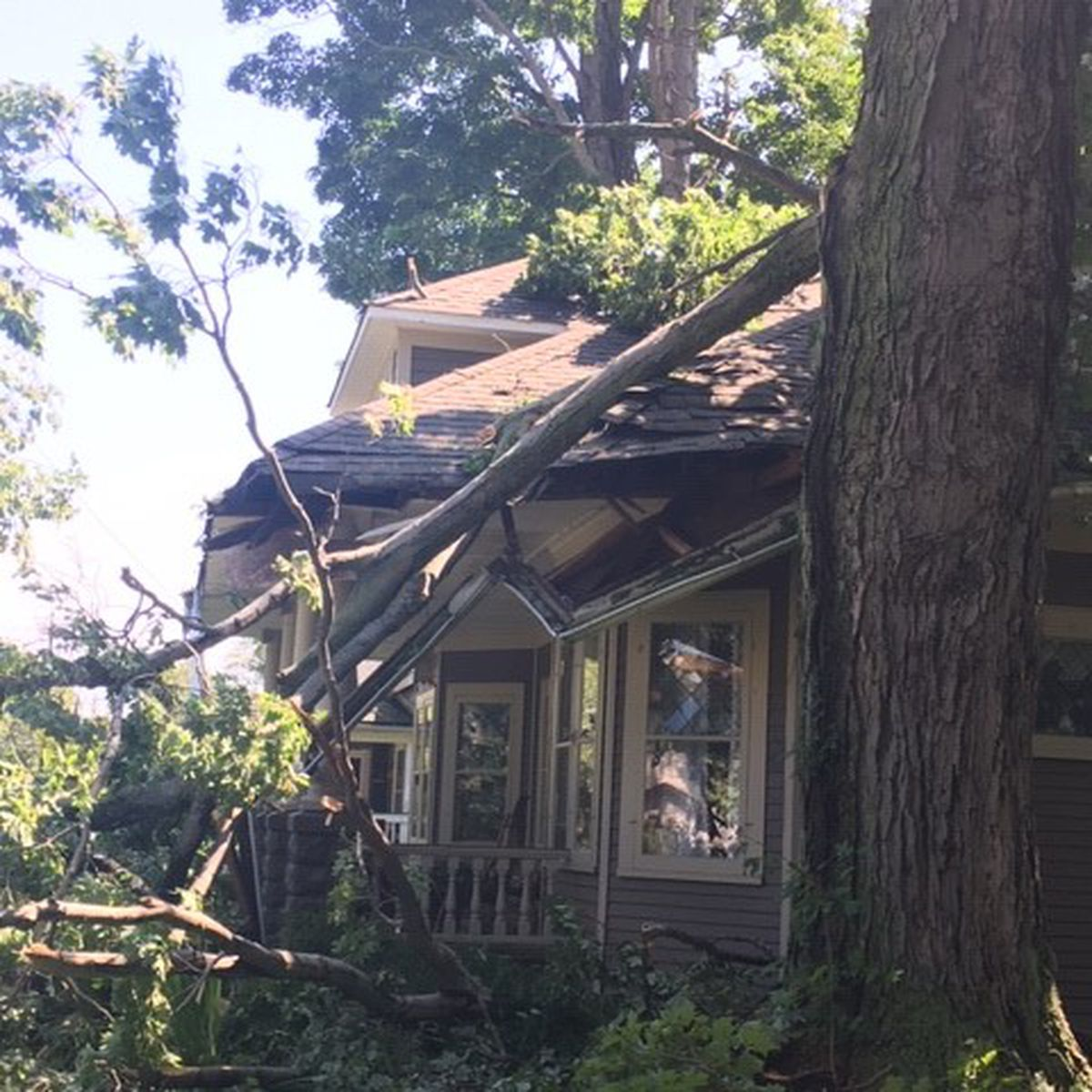 Trees, power lines down after powerful winds roar through Lake, Ashtabula counties