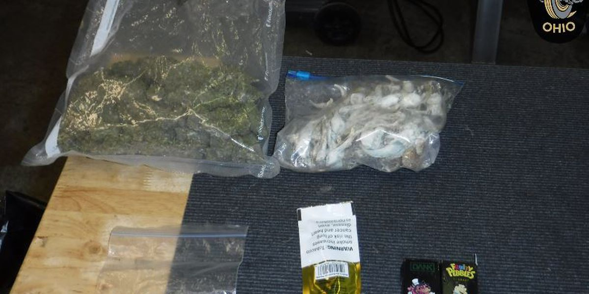 Psilocybin mushrooms and marijuana found during Huron County traffic stop