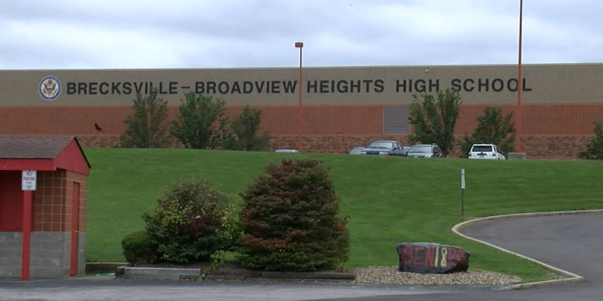 Mental health action plan being implemented in Brecksville-Broadview Heights City School District