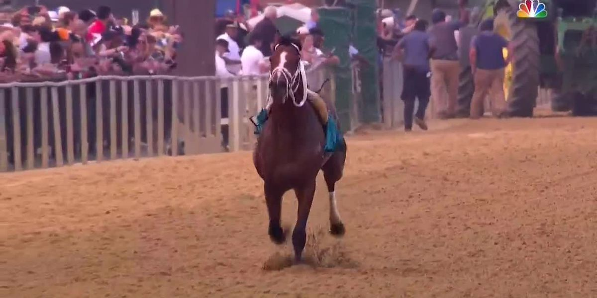 Riderless horse steals the show at the 144th Preakness Stakes